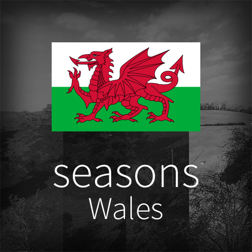 GEO: Wales icon