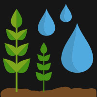 Wet crops icon